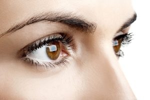 lash tinting, canterbury beauty salon