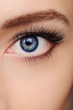 HD Brows & Lash Services Canterbury Beauty Salon